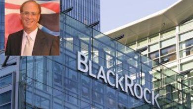 Photo of BlackRock CEO Larry Fink's Family Tree Was A Mystery Until Now